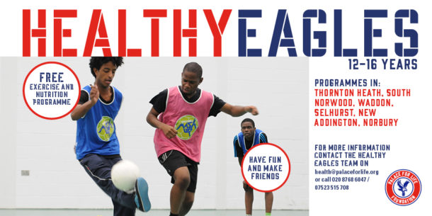Healthy Eagles flyer